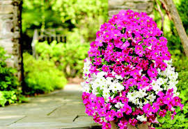 Build a Flower Tower—The Home Depot Garden Club