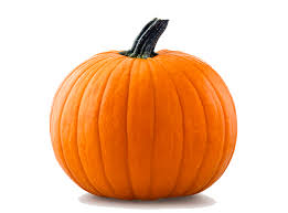 Pumpkin Patch Jacksonville Al by Dave U0027s Christmas Tree Lot U2013 Every Season Starts With Us