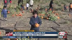 Pumpkin Patches In Bakersfield Ca by Murray Family Farms Host Inaugural U0027pumpkin Great Run U0027 Youtube