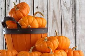Pumpkin Patch Nj Chester by Liberty House Restaurant Jersey City Restaurant U0026 Wedding Venue
