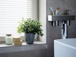 Plants In Bathroom Images by Bathroom Plants Entrancing Bathroom Plants Bathrooms Remodeling