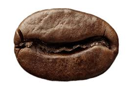 Single Roasted Coffee Bean Transparent PNG