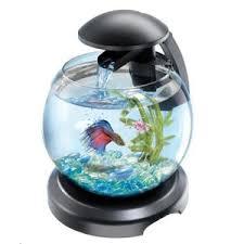 aquarium boule achat vente aquarium boule pas cher cdiscount