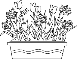 Spring Coloring Pages Flower Photo Gallery Of For Flowers