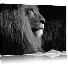 Ein LöwenkopfLogo In Schwarz Und Weiß Dies Ist VektorIllustration