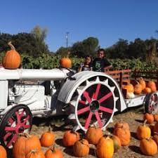 Pumpkin Patch Near Nolensville Tn by Zittel Farms 17 Photos U0026 20 Reviews Farmers Market 6781 Oak
