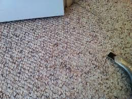 Shaw Berber Carpet Tiles Menards by Nylon Berber Carpet Colors Best Decor Things