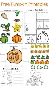 Life Cycle Of A Pumpkin Seed Worksheet by 390 Best Fall Pumpkin Images On Pinterest Fall Pumpkins