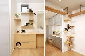 parcours pour chat arbre à chat personnalisé 100 bien être