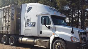 CDLLife | Hogan Team Company Driver Trucking Job And Get Paid Up To ... Driving Divisions Prime Inc Truck Driving School Favel Transportation Your Experienced Transportation Professionals Low Turnover At Hunt Flatbed Youtube Midwest Livestock Group Overlooked Video Gem Reveals A Bygone Trucking Era Steves Transport Facebook Express Cattle Truck Jobs Best Image Kusaboshicom Driver Australia Bull Haulin