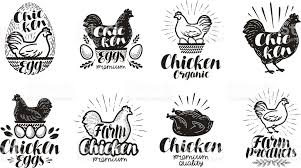 Chicken poultry farm label set Food meat egg icons or icons