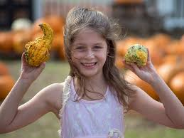 Christ United Methodist Pumpkin Patch Mobile Al by Cumc Youth Ministry Home Facebook