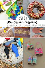 50 Montessori Preschool Bird Unit Activities Perfect For Spring Or Fall Studies When Kids