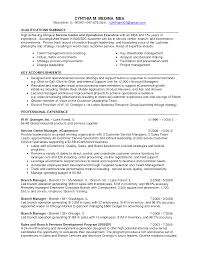Customer Service Representative Resume Summary