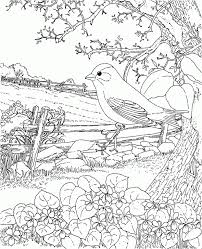 Easter Goldfinch New Jersey State Bird Coloring Page