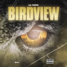 100 Birdview Lil Poppa Lyrics Genius Lyrics