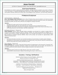 Sample Curriculum Vitae For Job Application Pdf Resume Truck Driver ...