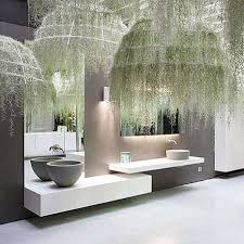 Good Plants For Windowless Bathroom by Buy Indoor Plants Online Cheap Feng Shui For Bathroom And Toilet