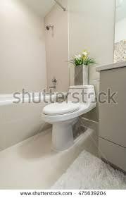 Plants For Bathroom Counter by Modern New Small Bathroom Interior Bath Stock Photo 82125751