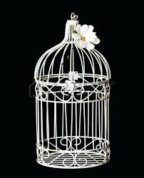 Shabby Chic Bird Cage Isolated On Black Background Stock Photo Picture And