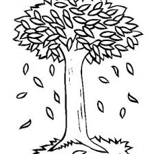 Trees Autumn Leaves Coloring Pages Tree