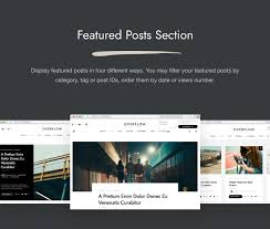 100 Contemporary Design Blog Overflow Magazine WordPress Theme