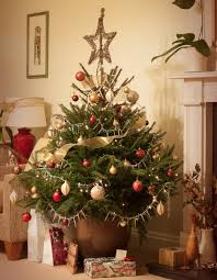Which Christmas Tree Smells The Best Uk by Christmas Countdown News Tips Advice And Inspiration