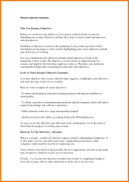First Job Resume Objective Examples Professional