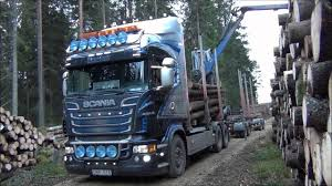 Scania R730 Timber Truck Loading - YouTube