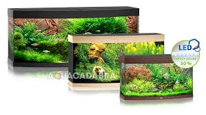 juwel aquarium vision 260 juwel vision 260 led aquarium and cabinet in black ebay