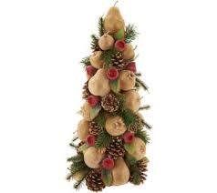 Qvc Christmas Tree Storage Bag by Holidays With Jill For The Home U2014 Qvc Com