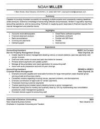 Accounting Assistant Resume Example