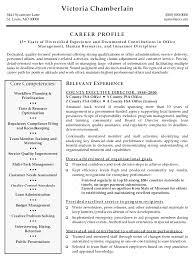 Resume Examples Director ResumeExamples