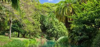 Botanical Gardens Kauai
