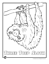 Pretentious Design Ideas Jungle Animals Coloring Page Endangered Three Toed Sloth Animal