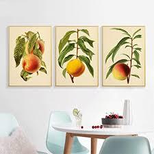 blumen malen wandkunst früchte pfirsich birne leinwand