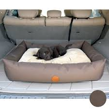 Coolaroo Dog Bed Large by Furnitures Using Interesting Coolaroo Dog Bed For Chic Pet