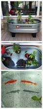 Horse Water Trough Bathtub by Best 25 Horse Trough Ideas On Pinterest Water Trough Barn