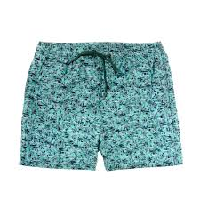 100 Coc Republic O Mens Swordfish Board Shorts In Green