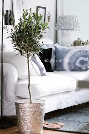 olive tree house of ideas http myhouseofideas de