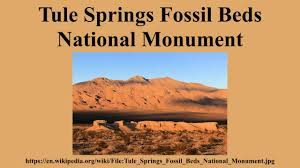 Tule Springs Fossil Beds National Monument by Tule Springs Fossil Beds National Monument Youtube