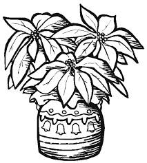 Pottery Poinsettia Coloring Page