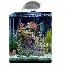 aquarium nano eau de mer nano marinus cube 30 dennerle