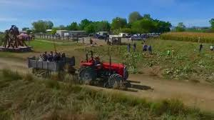 Free Pumpkin Patch Fort Collins by Something From The Farm Fort Collins Co Youtube