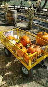 Irvine Ranch Railroad Pumpkin Patch by On The Go Oc Things To Do With Your Family September 2014