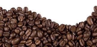 Free Images Toppng Transparent Coffee Beans Png Clip Art Freeuse Stock