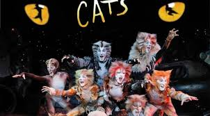 cats on broadway cats broadway musical home