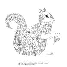 Enchanted Forest Grown Up Colouring Page In A Detailed Squirrel Design Davlin Publishing
