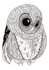 Best Adult Coloring Books Cute Little Owl Page
