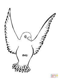 Click The Black Bird Coloring Pages